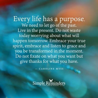 life-purpose-2a9j